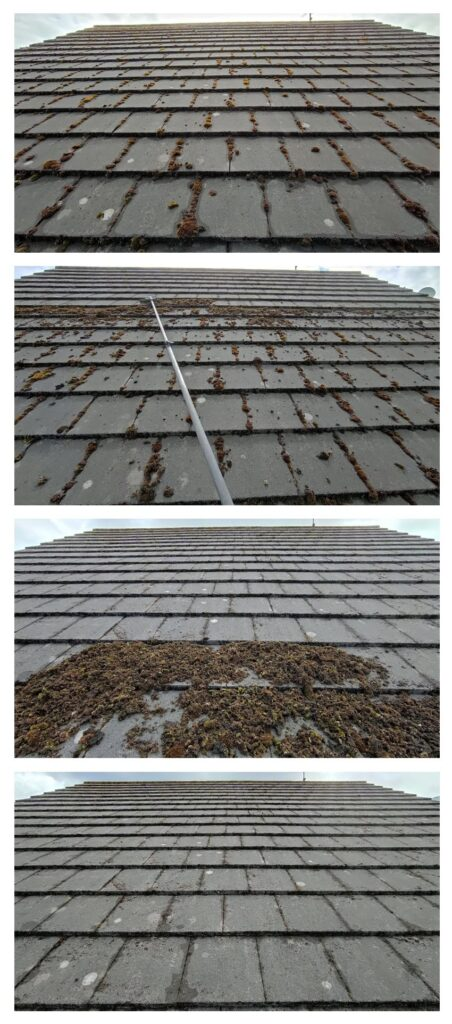 Roof Moss Removal Procedure